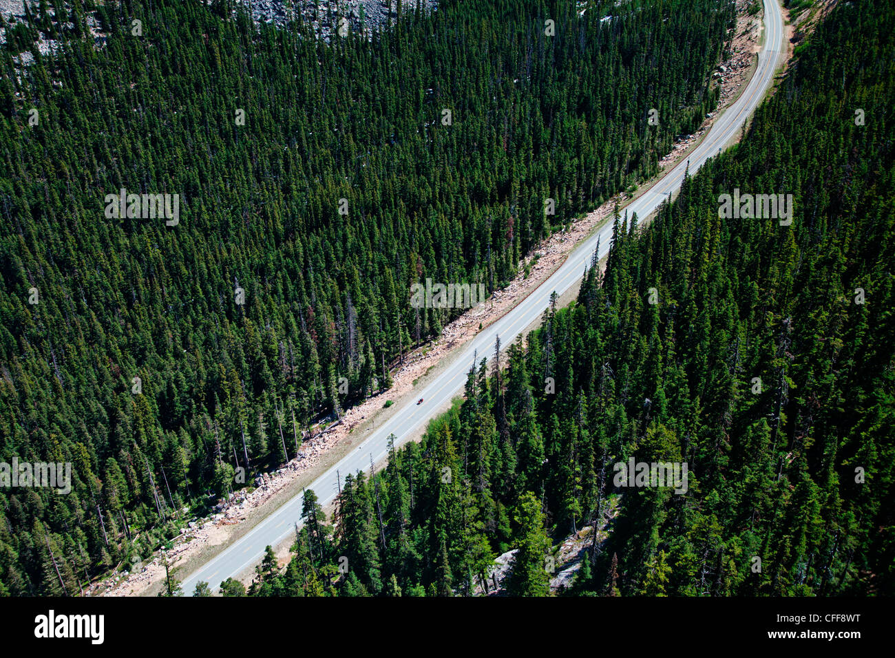 A road cuts through a national park and green trees. - Stock Image