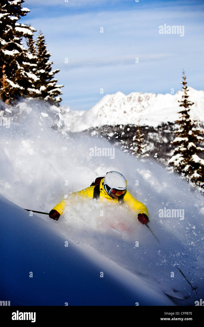A athletic skier rips fresh powder turns in the backcountry on a sunny day in Colorado. - Stock Image