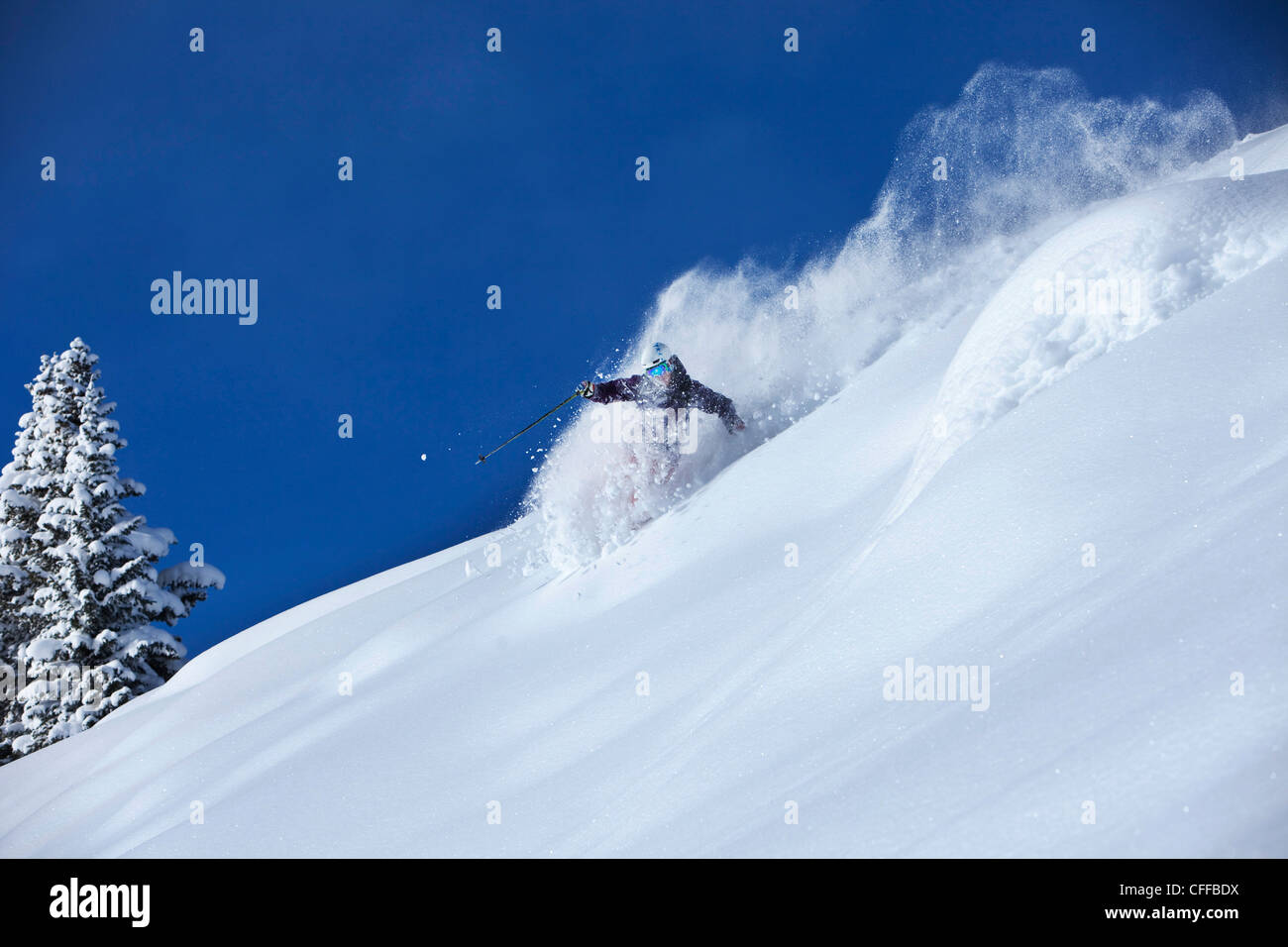 A athletic skier rips fresh deep powder turns in the backcountry on a sunny day in Colorado. Stock Photo