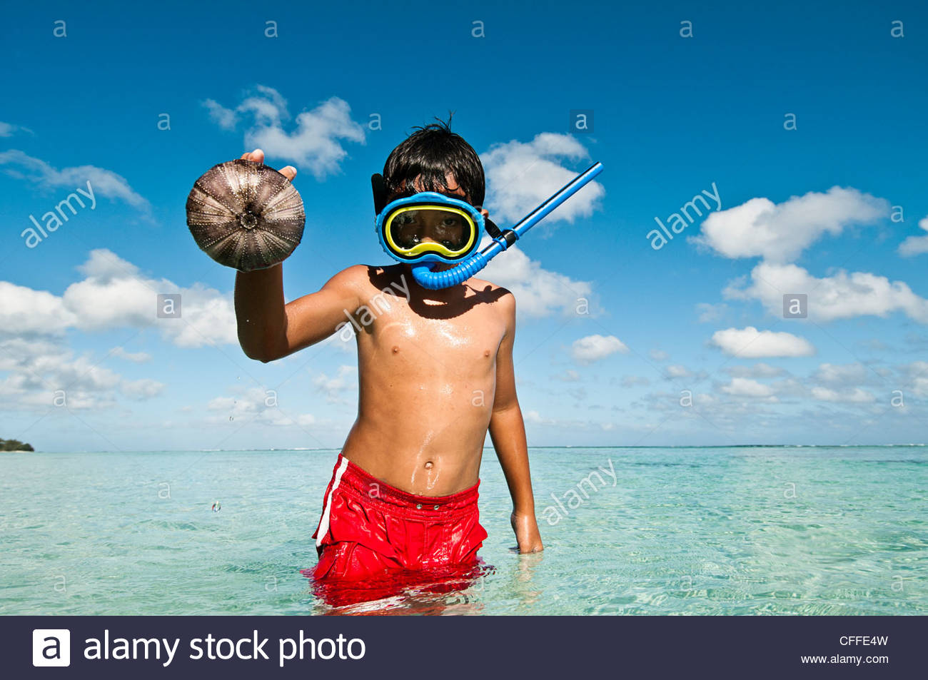 A young boy wearing a snorkel and mask, holds up a sea urchin he discovered whilst snorkelling, Cook Islands. - Stock Image