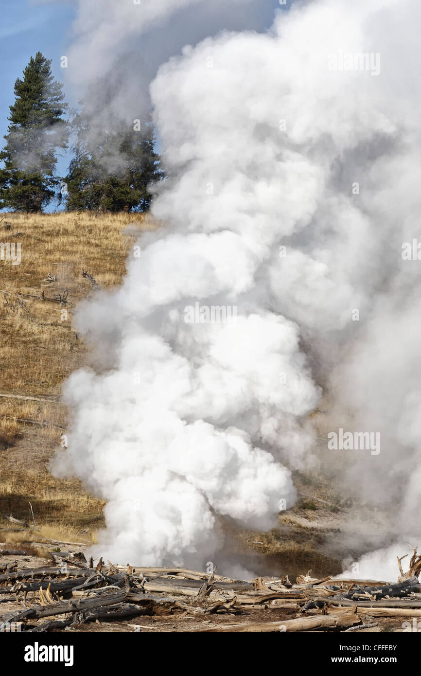 Cooking Hillside in central Yellowstone National park - Stock Image