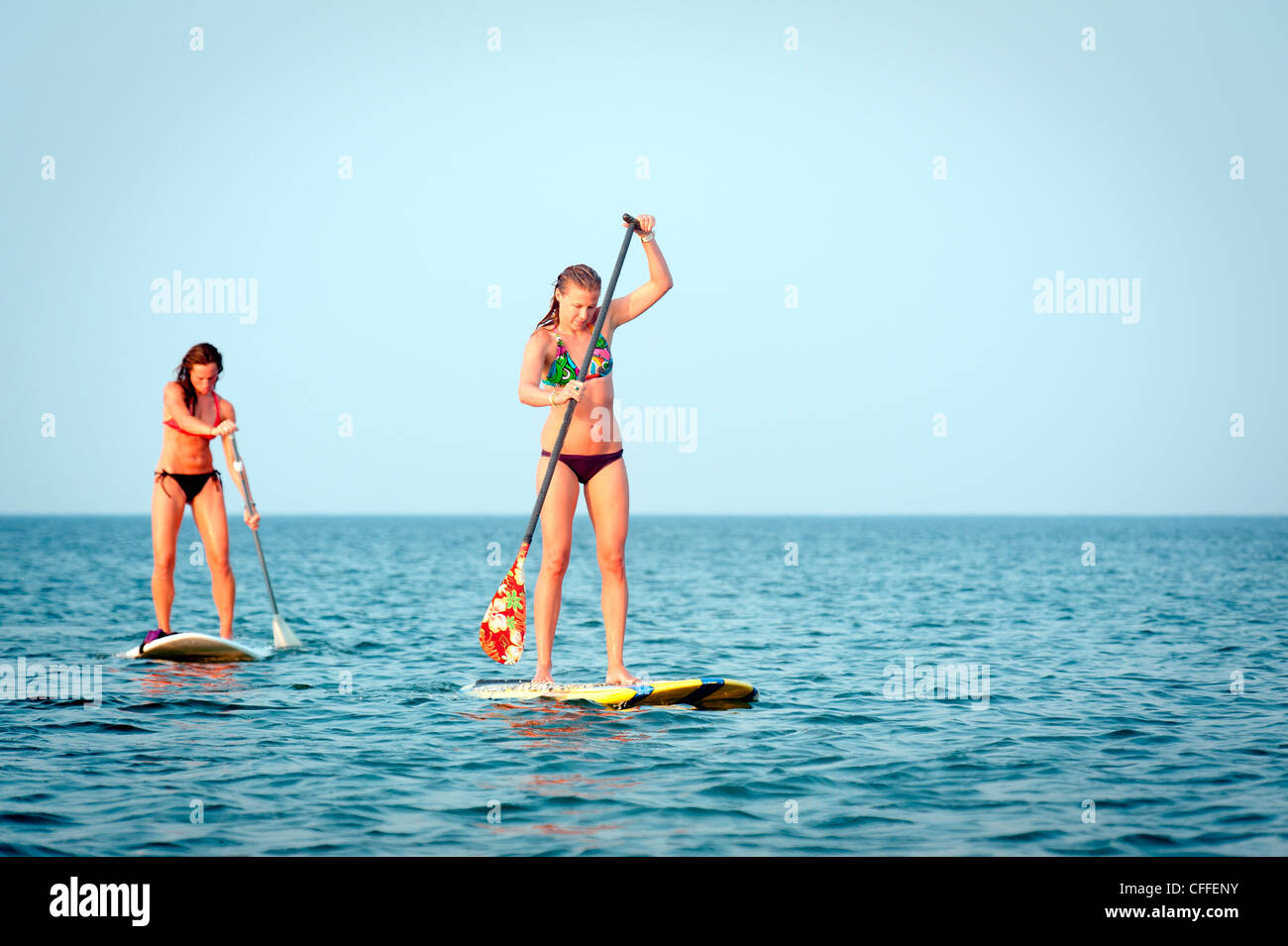 c9852f7bc63 Two women stand up paddle board by the coast Stock Photo: 43981447 ...