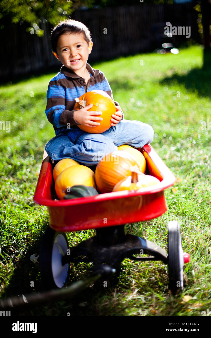 Young boy holds a pumpkin while seated in a red wagon filled with sqaush and pumpkin. - Stock Image