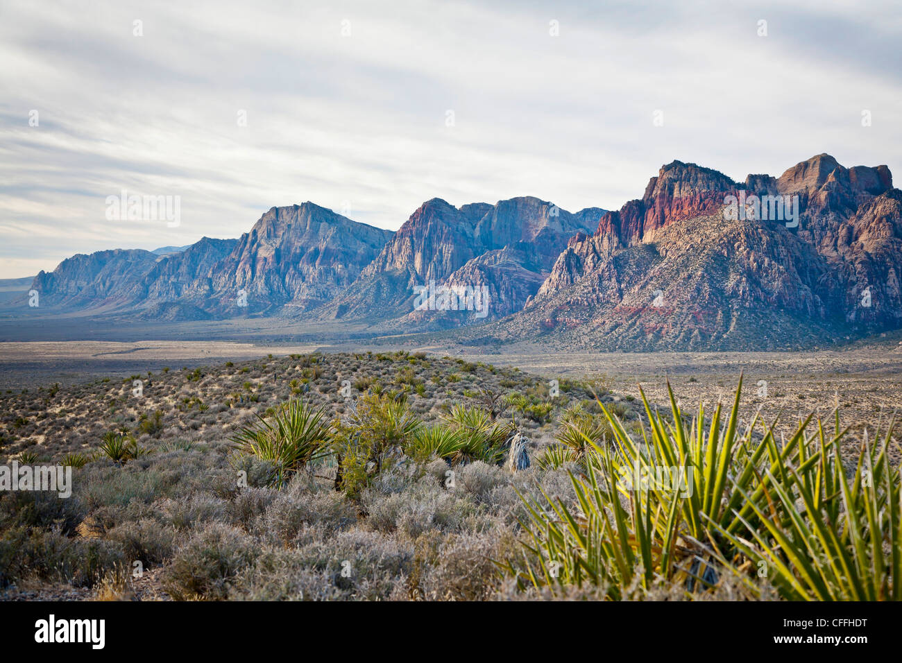 Red Rock Canyon National Conservation Area, Nevada, USA. - Stock Image