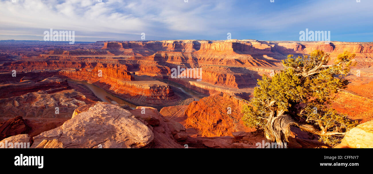 Panoramic view of sunrise over the Colorado Plateau at Dead Horse State Park, Moab Utah, USA - Stock Image