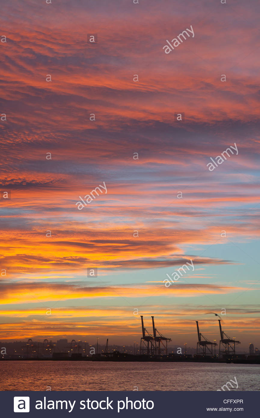A vibrant winter sunrise colors the skies over the Port of Seattle shipping cranes in Seattle, Washington. - Stock Image