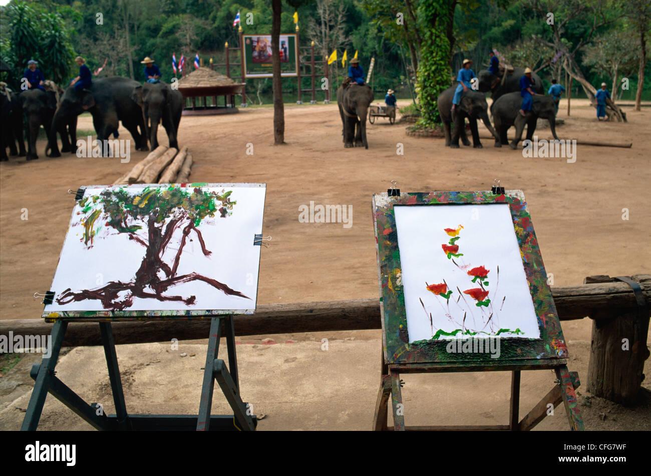 Thailand, Chiang Mai, Mae Sa Elephant Camp, Elephant Art - Stock Image