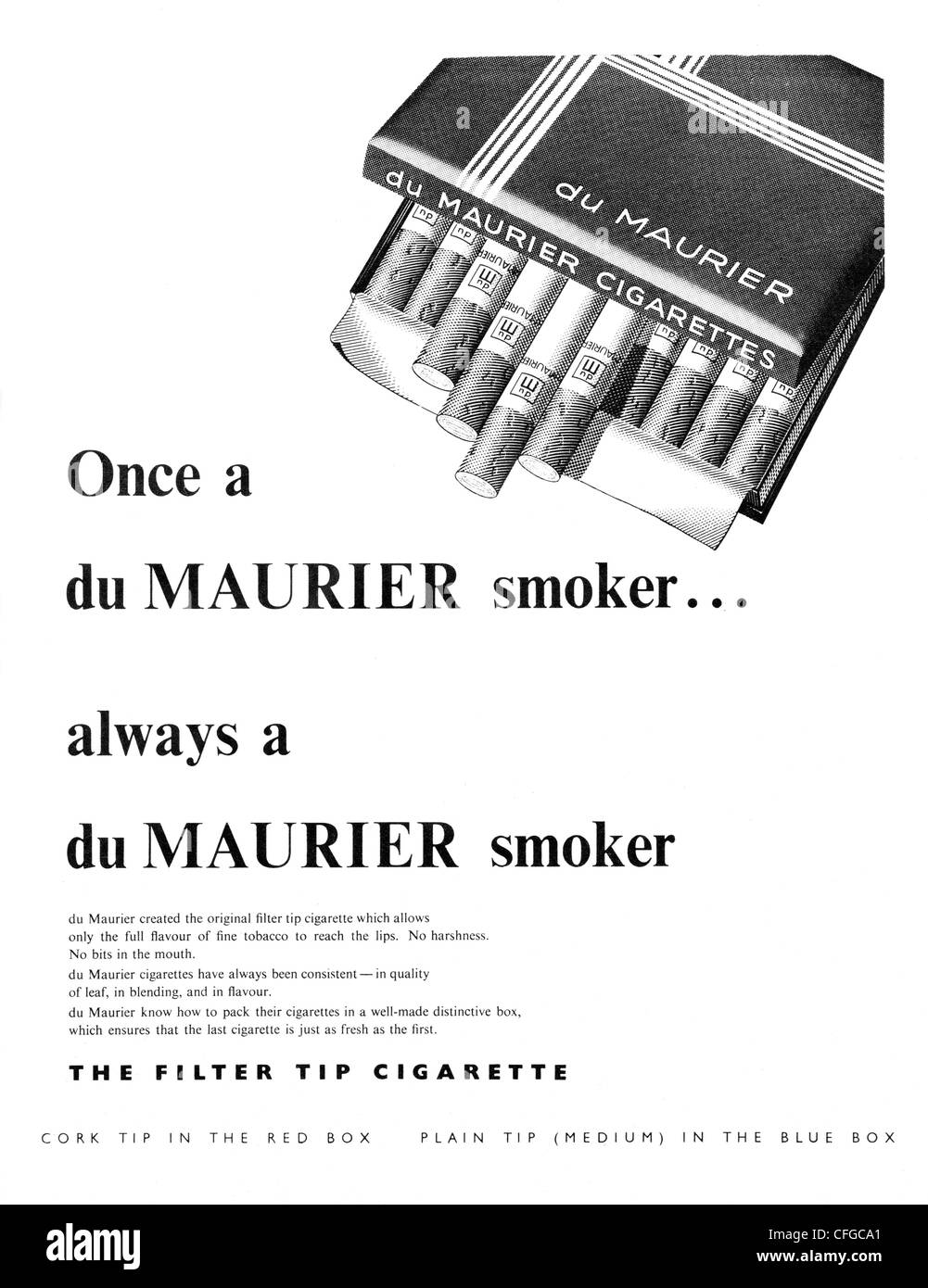 Du Maurier cigarettes advert from 1955 - Stock Image