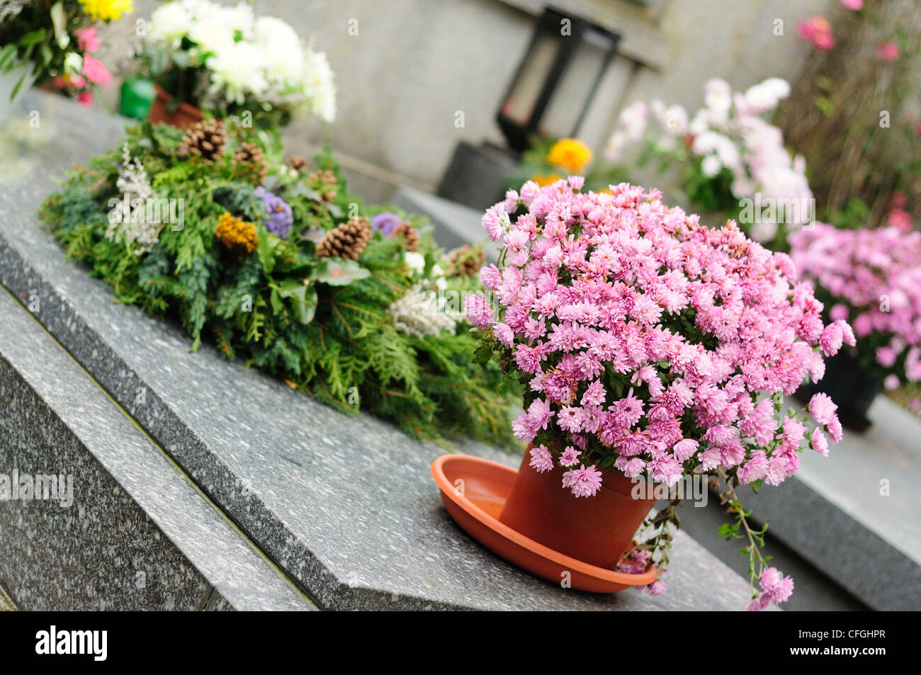 Funeral flowers stock photos funeral flowers stock images alamy funeral flowers placed on the grave at all souls holiday stock image izmirmasajfo
