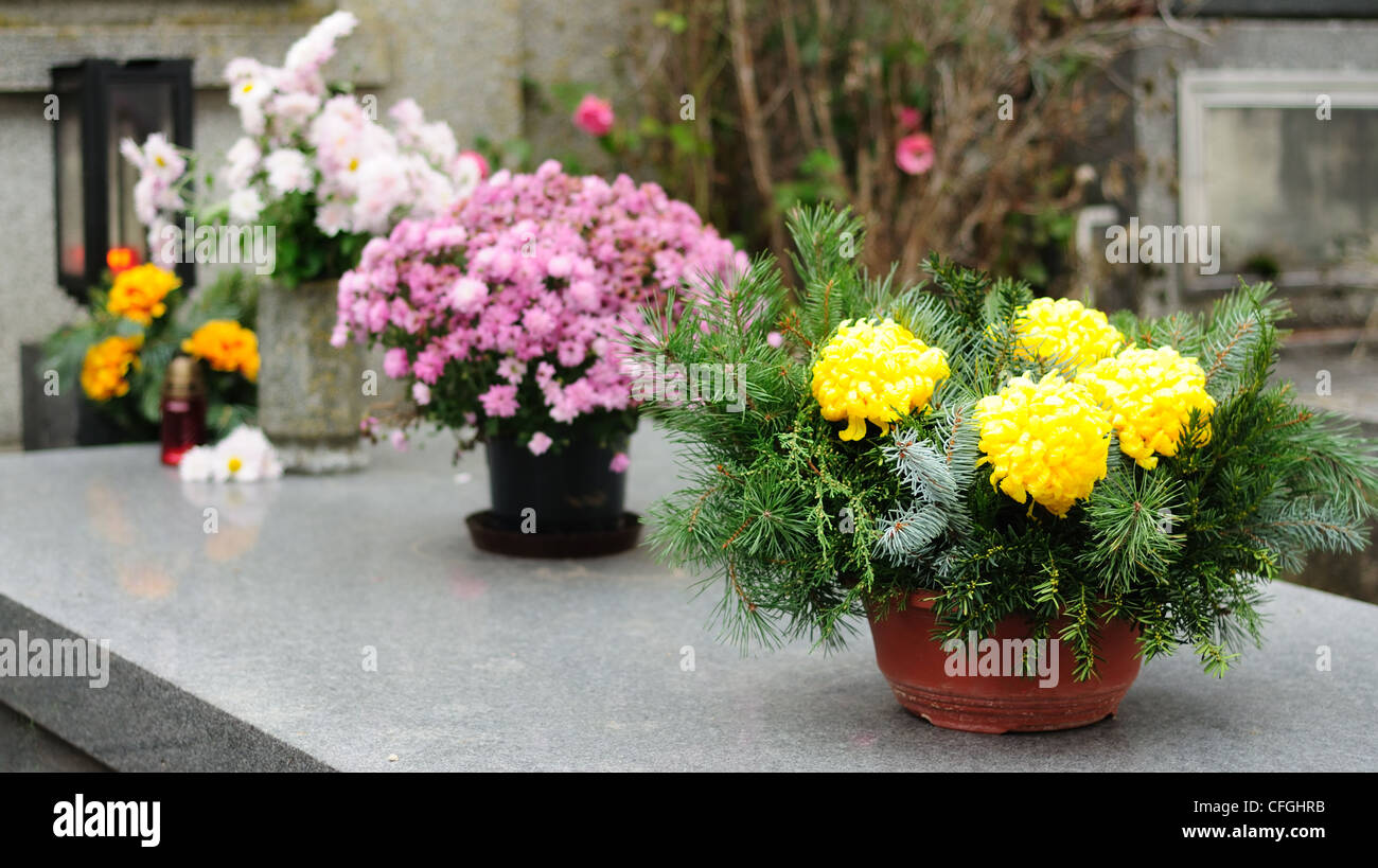 Funeral Flowers Stock Photos Funeral Flowers Stock Images Alamy