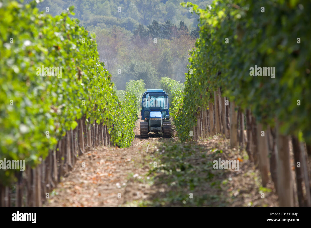 Tractor spraying the Bulgari owned vineyard near San Casciani de ...