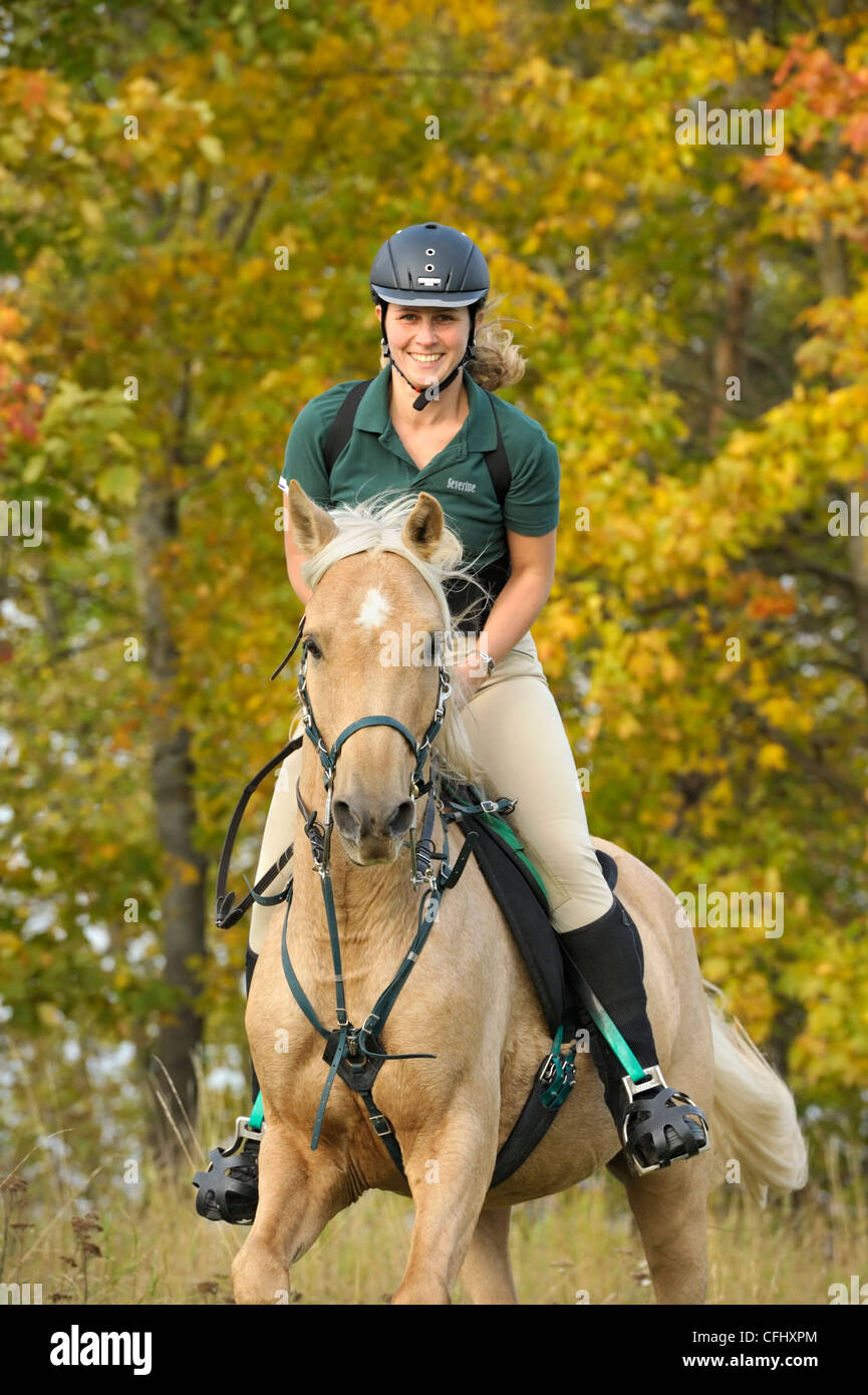 Rider wearing a back protector on a palomino thoroughbred horse in autumn - Stock Image