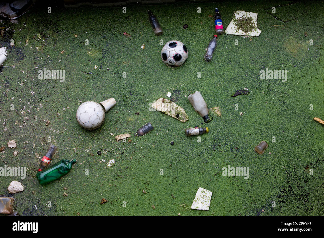 Floating rubbish and weeds collecting in Cardiff Bay - Stock Image