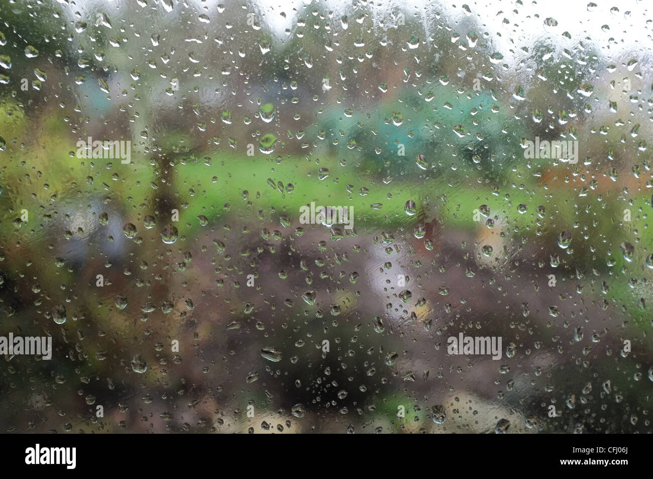 Raindrops on a window looking out into a Cornish vegetable garden - Stock Image