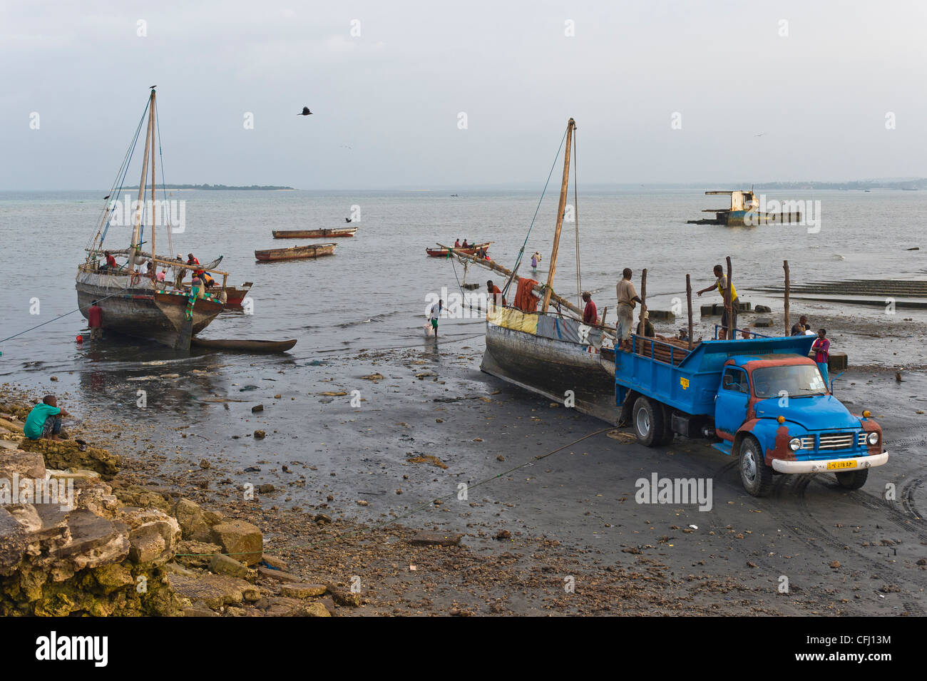Collection of Mangrove poles shipped with Dhows to Stone Town Zanzibar Tanzania - Stock Image