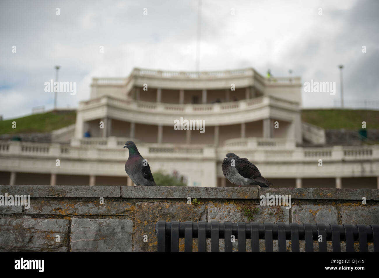 Two pigeons sit on a wall on Plymouth Hoe in front of the bandstand. - Stock Image