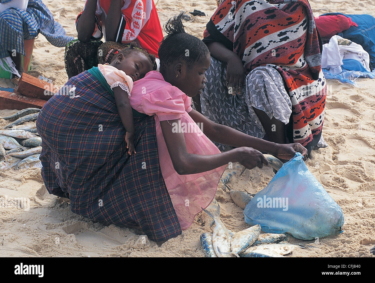 Young girl collecting discarded fishes on the beach Ile Saint Louis Senegal - Stock Image