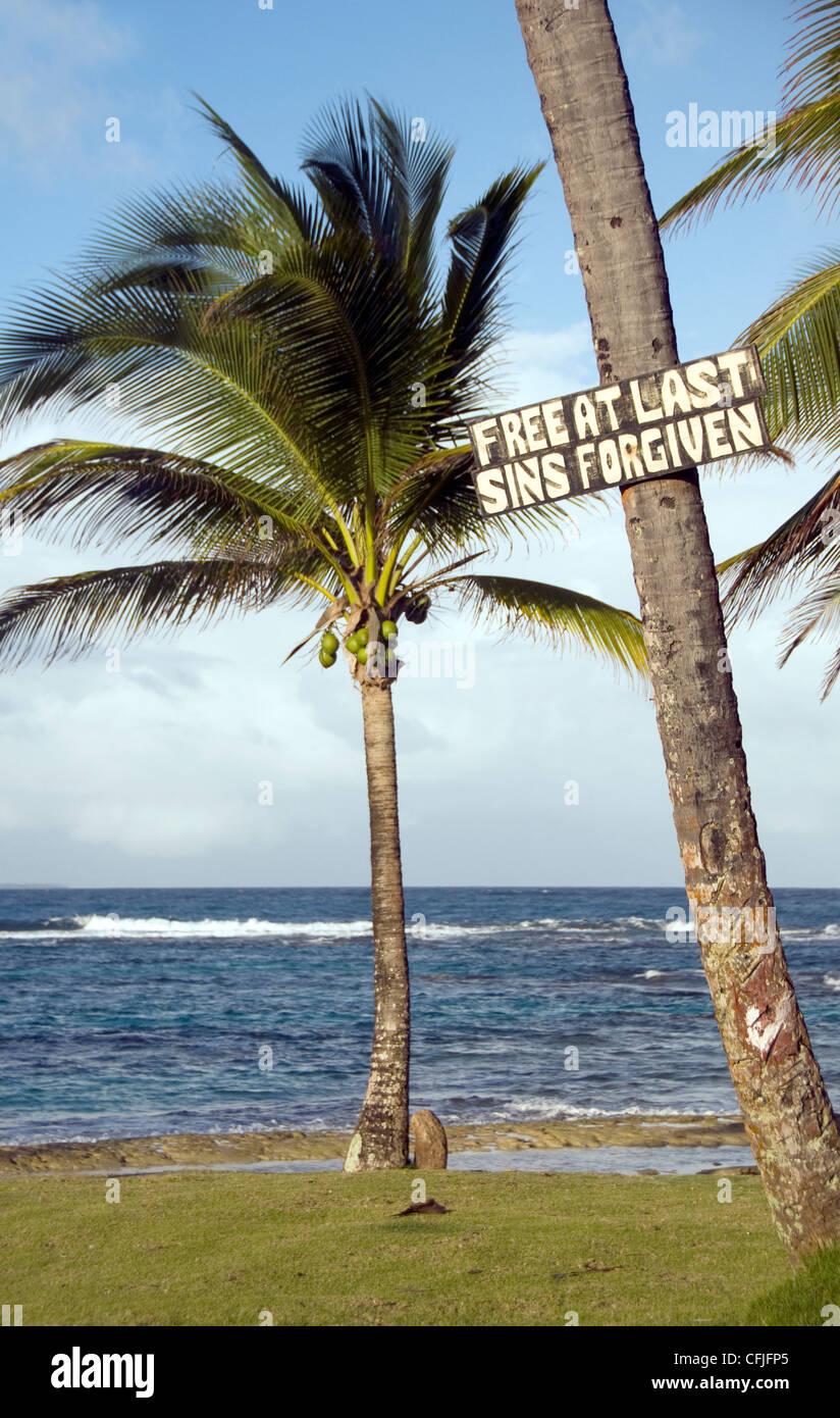 sign on coconut tree by Sallie Peaches beach Big Corn Island Nicaragua Stock Photo
