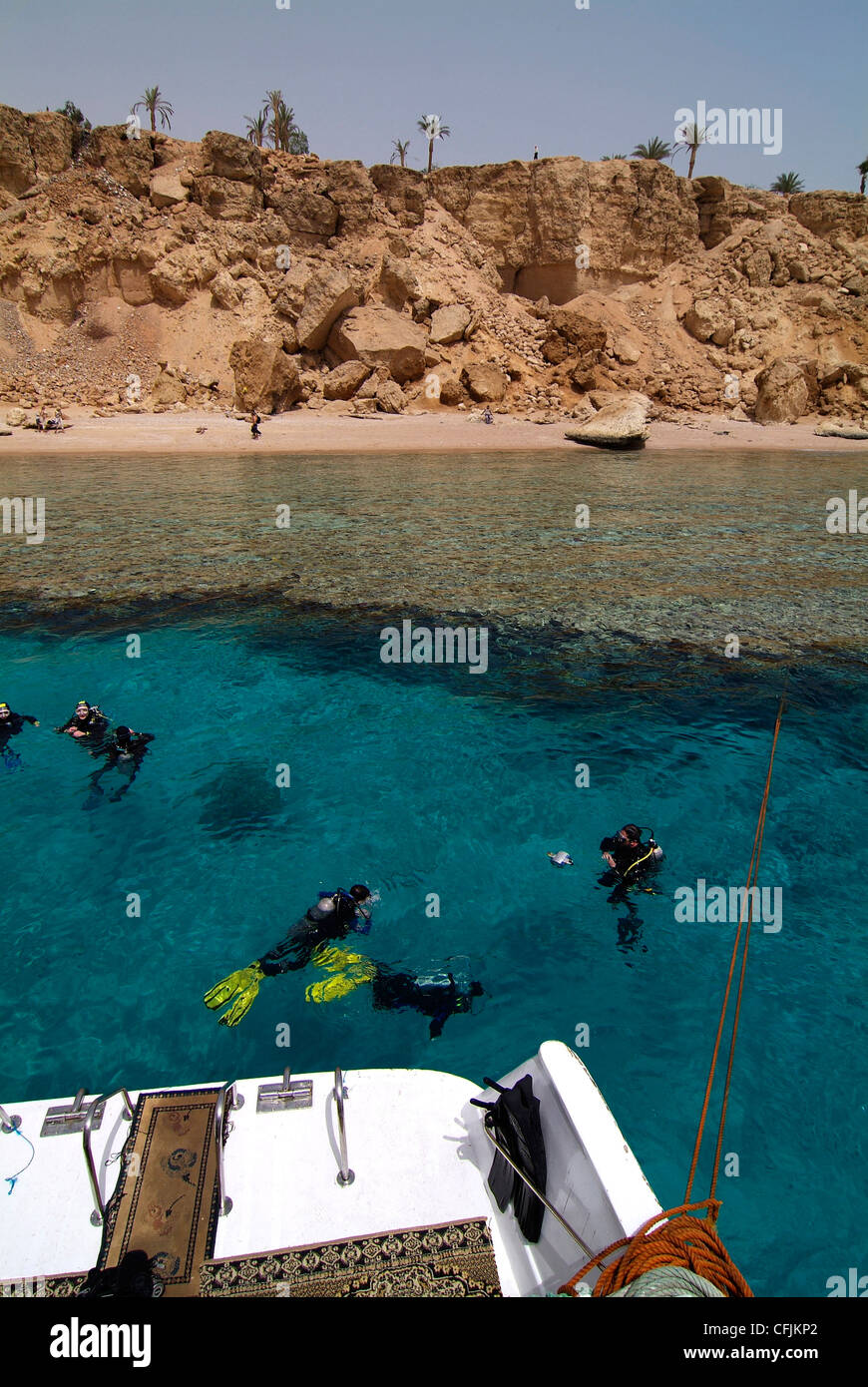 Divers in the Red Sea, Sharm el-Sheikh, Egypt, North Africa, Africa - Stock Image