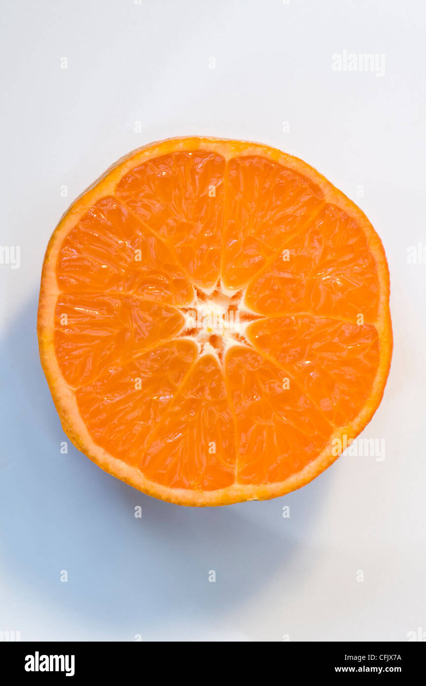 Studio shot of single Clementine orange halve, which are a variety of mandarin orange, displayed on a muted white - Stock Image