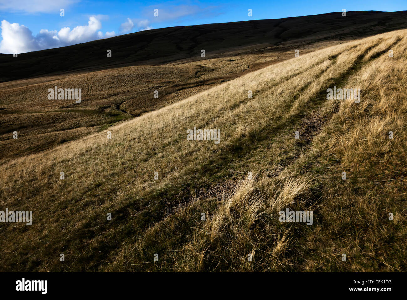Old vehicle tracks across moorland, Black Mountains, Brecon Beacons National Park, Wales, UK - Stock Image