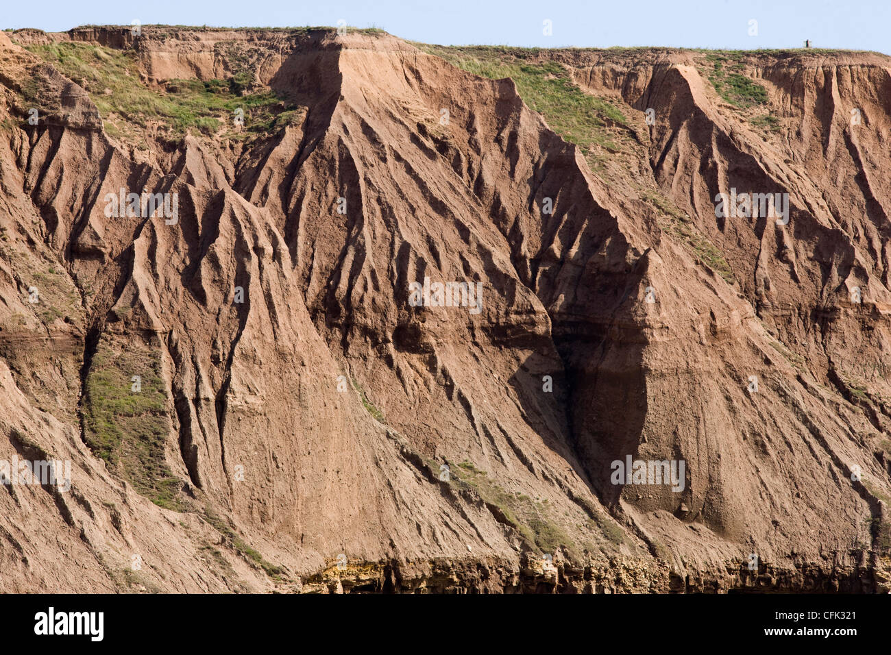 Filey Brigg, Carr Naze, crumbling clay cliffs showing landslides and landslips - Stock Image