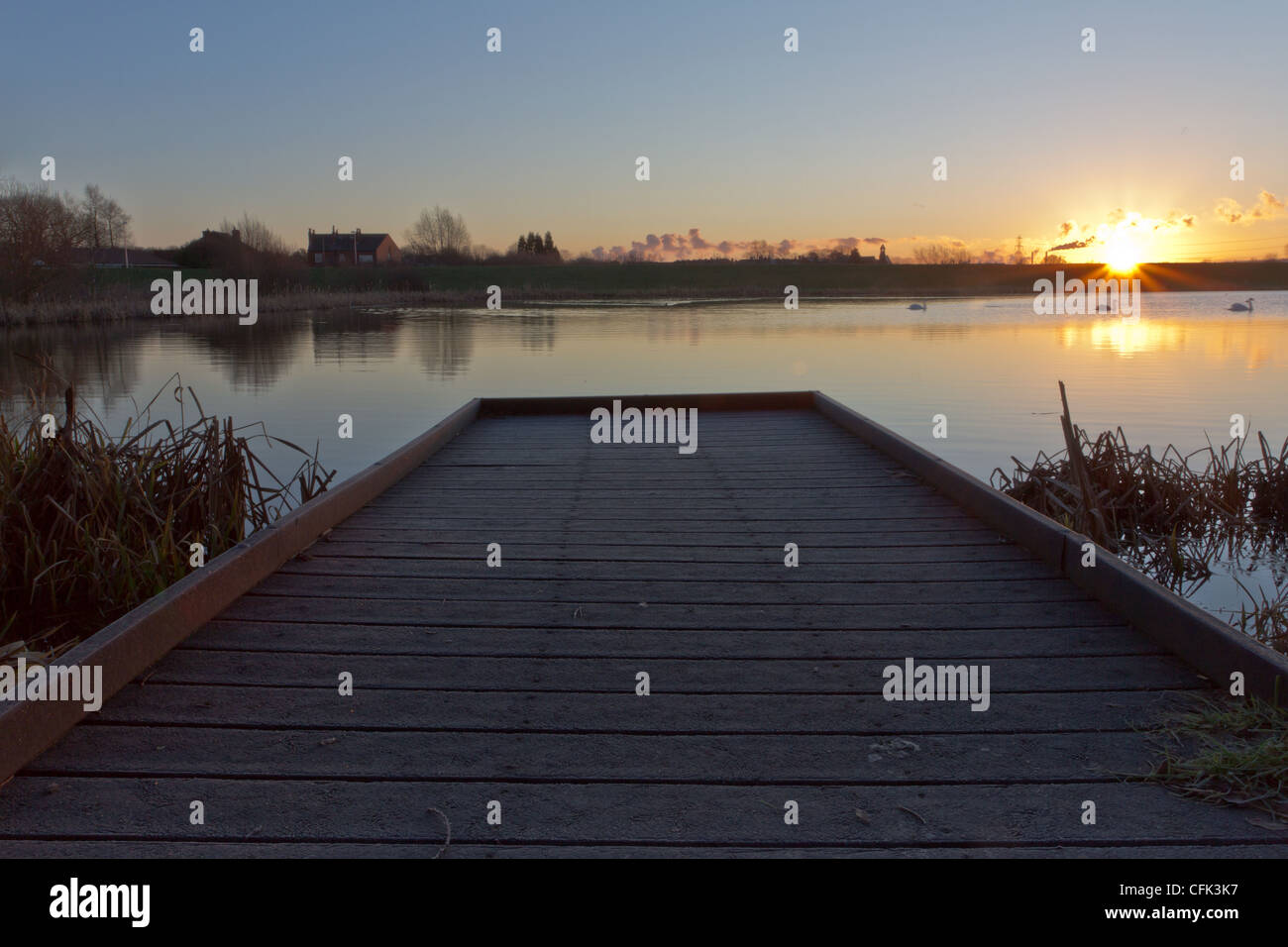 Swan lake, sunrise over a fishing pond - Stock Image