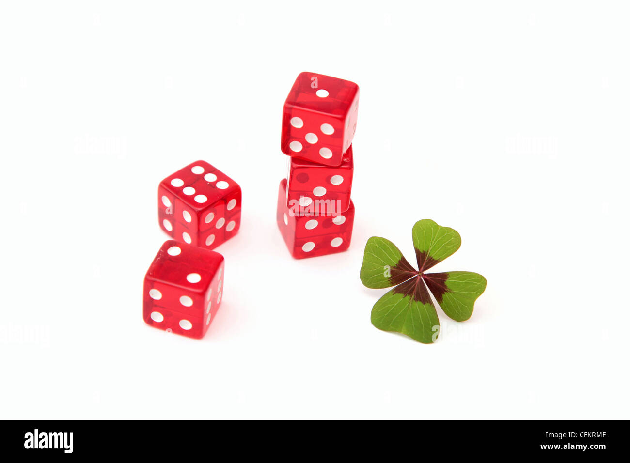 A four leave clover as a lucky charm while gambling - Stock Image