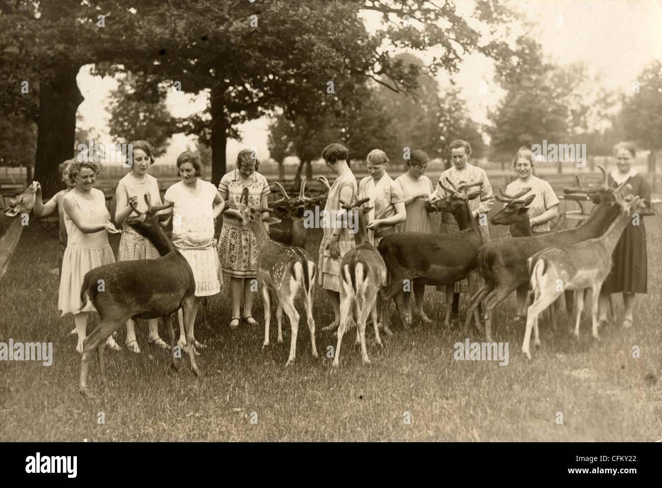Eleven Women Feeding Reindeer Herd - Stock Image