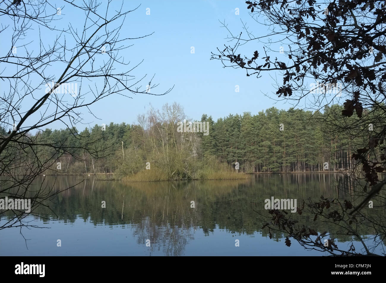 Heath Lake Nature Reserve, Wokingham Without, Crowthorne, Berkshire -1 - Stock Image