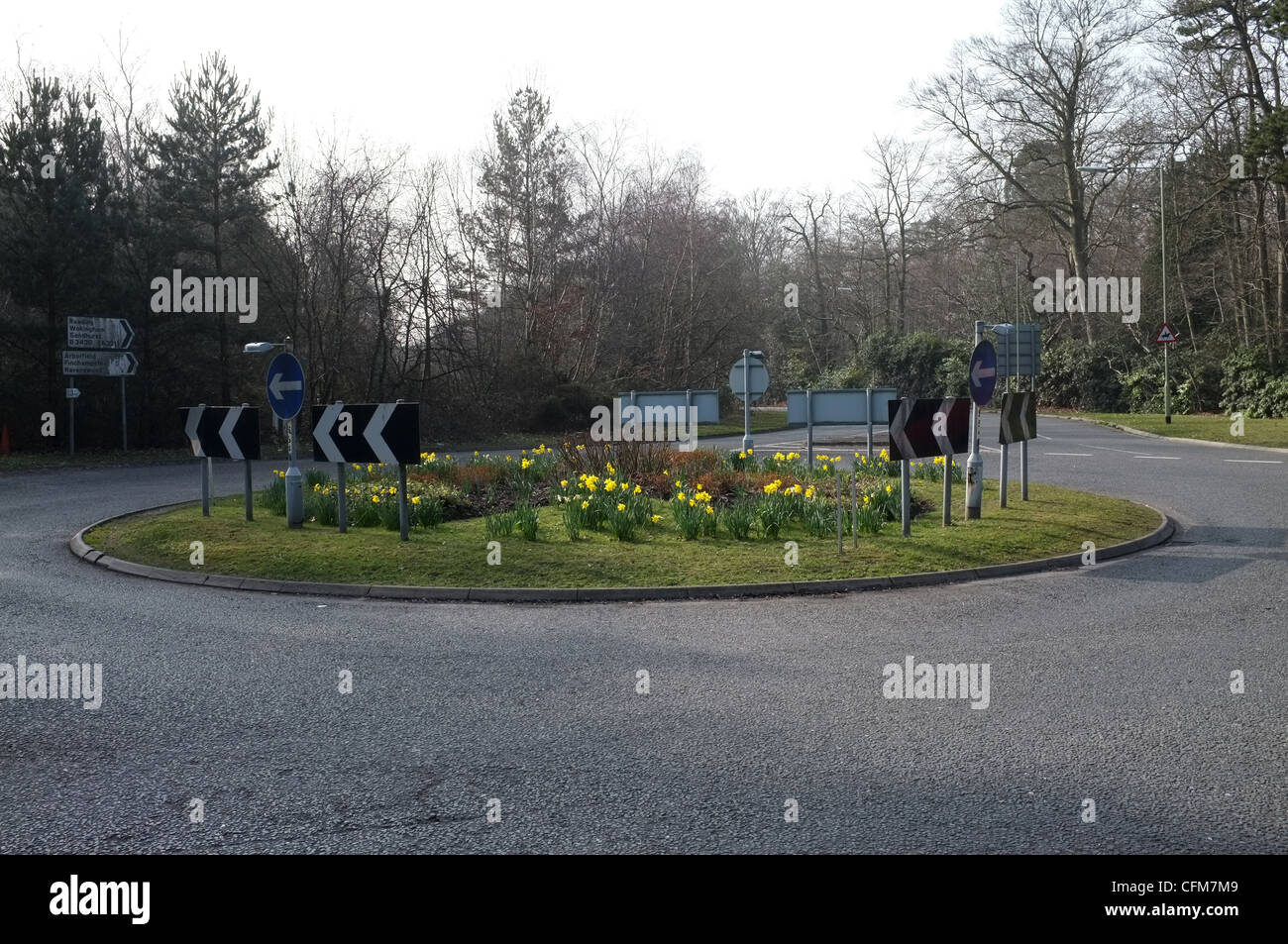 Roundabout in Springtime, Junction of Nine Mile Ride & Old Wokingham Road - Stock Image