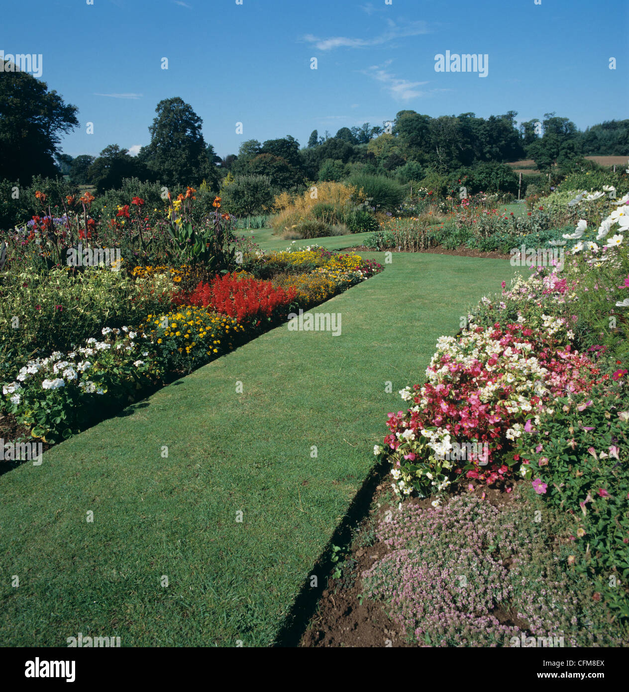 Lawn and herbaceous borders at Bicton College, Devon - Stock Image