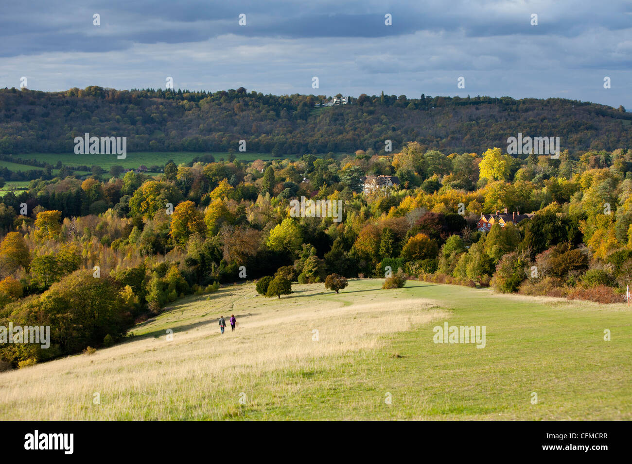 Autumn view north along the Burford Spur, Dorking, Surrey, England, United Kingdom, Europe - Stock Image