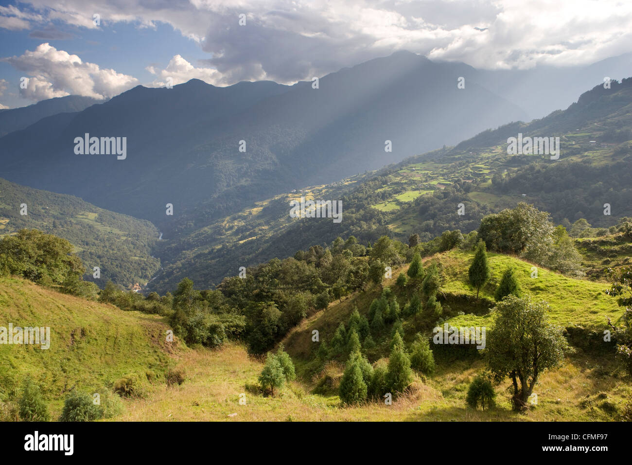 Storm light bathing Tshankha village against a dramatic backdrop of mountains, Phobjikha Valley, Bhutan, Himalayas, - Stock Image