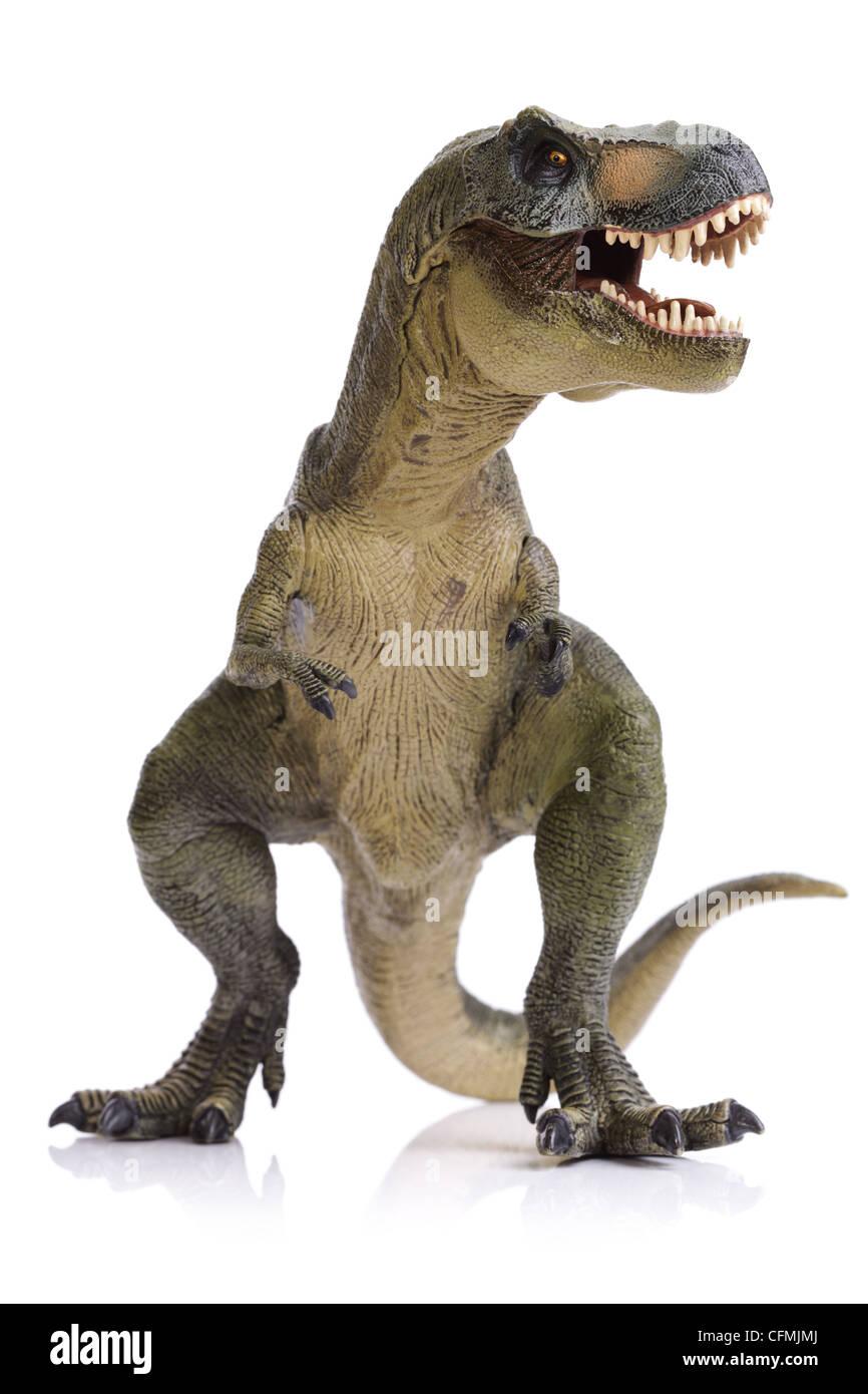 Tyrannosaurus Rex dinosaur - Stock Image
