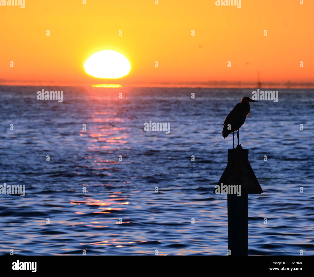sunrise over the water with a bird on a pylon - Stock Image
