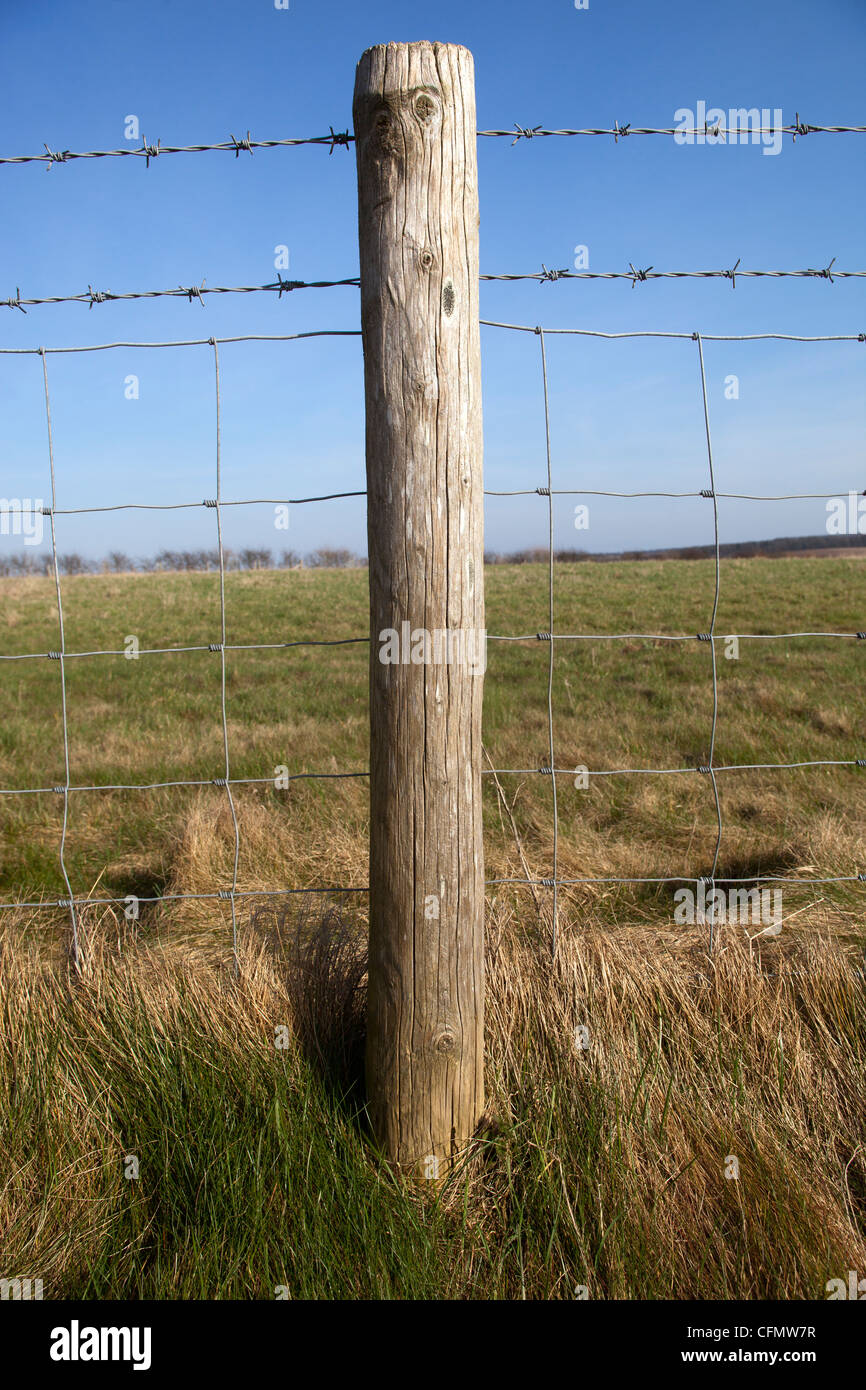 Fence Post with Barbed Wire - Stock Image
