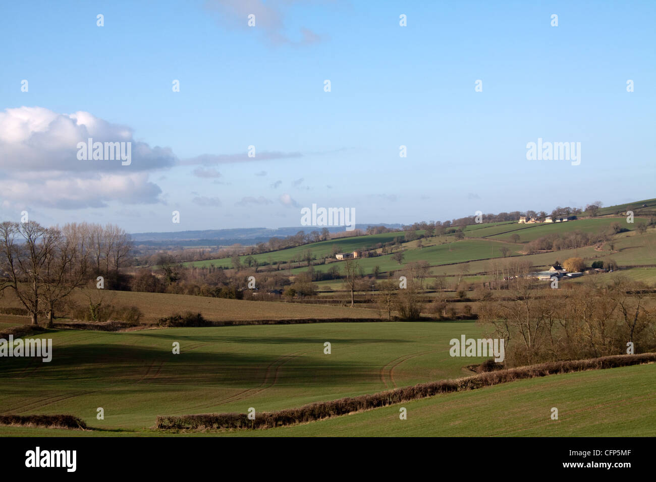 Fields Brailes - Stock Image