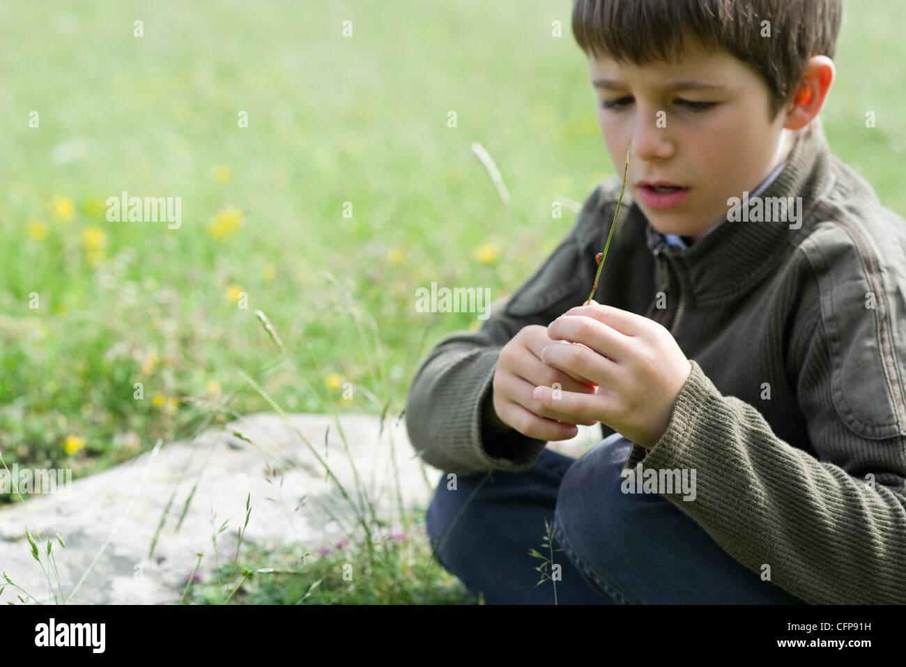 Boy in meadow - Stock Image