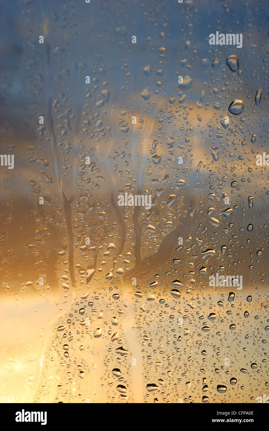 Condensation on the window - Stock Image