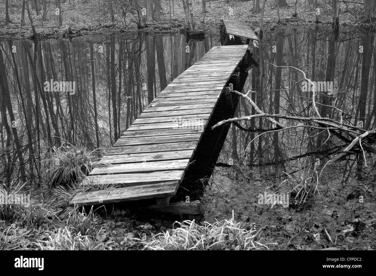 A wooden footbridge across an ethereal swamp in black and white, Connecticut USA Stock Photo
