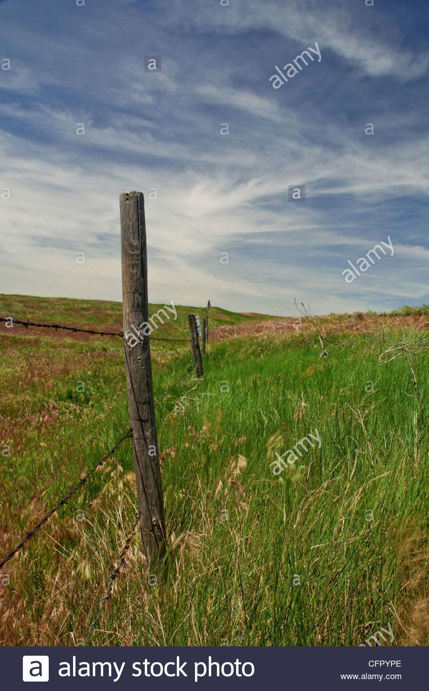 Fencepost, Rural Cheyenne County, KS, June 5, 2010 - Stock Image