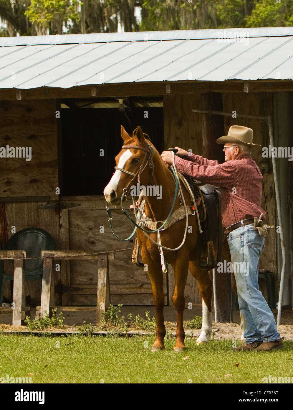 A cowboy preparing to mount his horse. Stock Photo