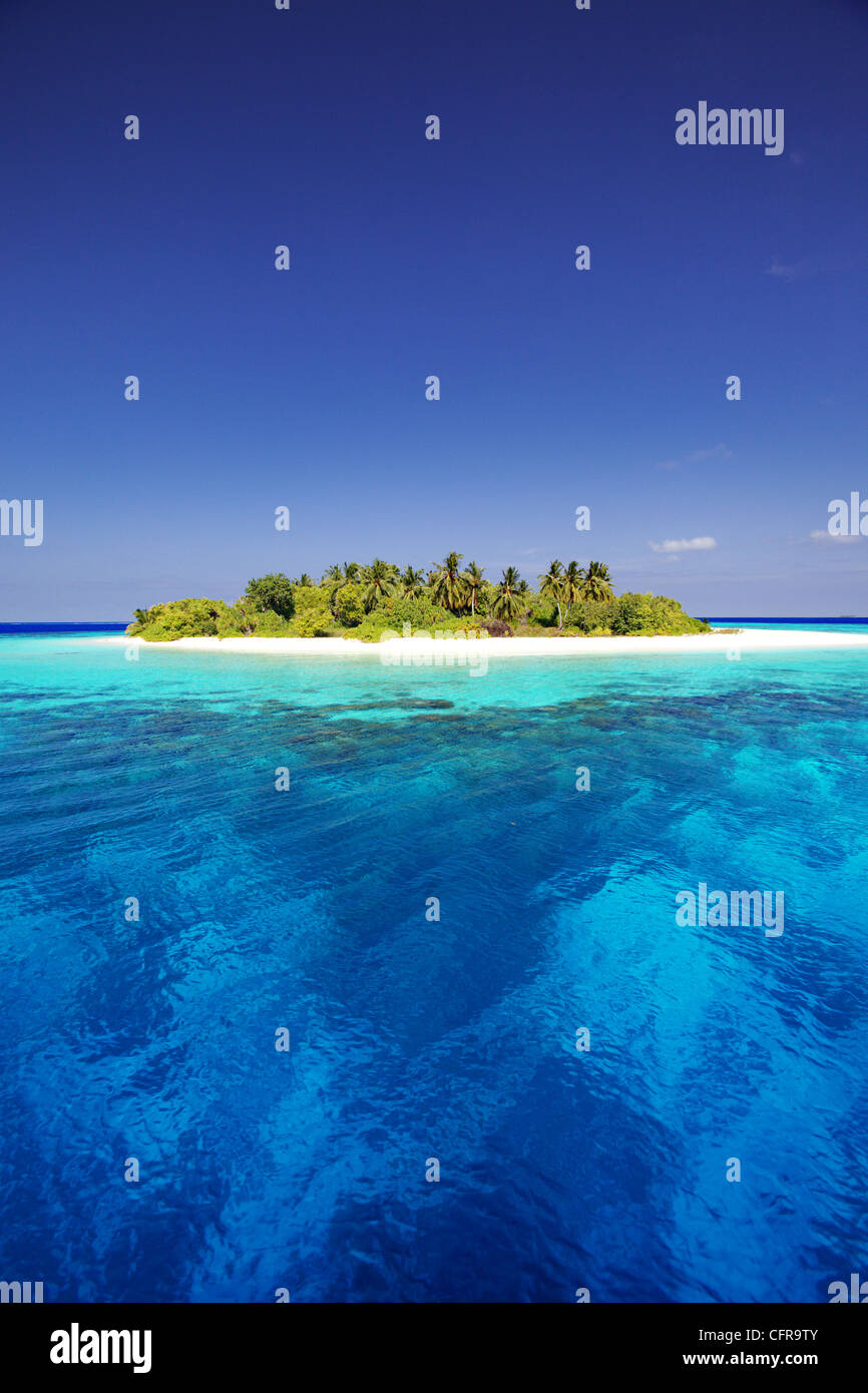 Tropical island and lagoon in Maldives, Indian Ocean, Asia - Stock Image
