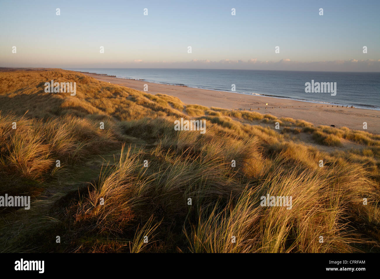 The dunes on a winter morning at Winterton on Sea, Norfolk, England, United Kingdom, Europe - Stock Image