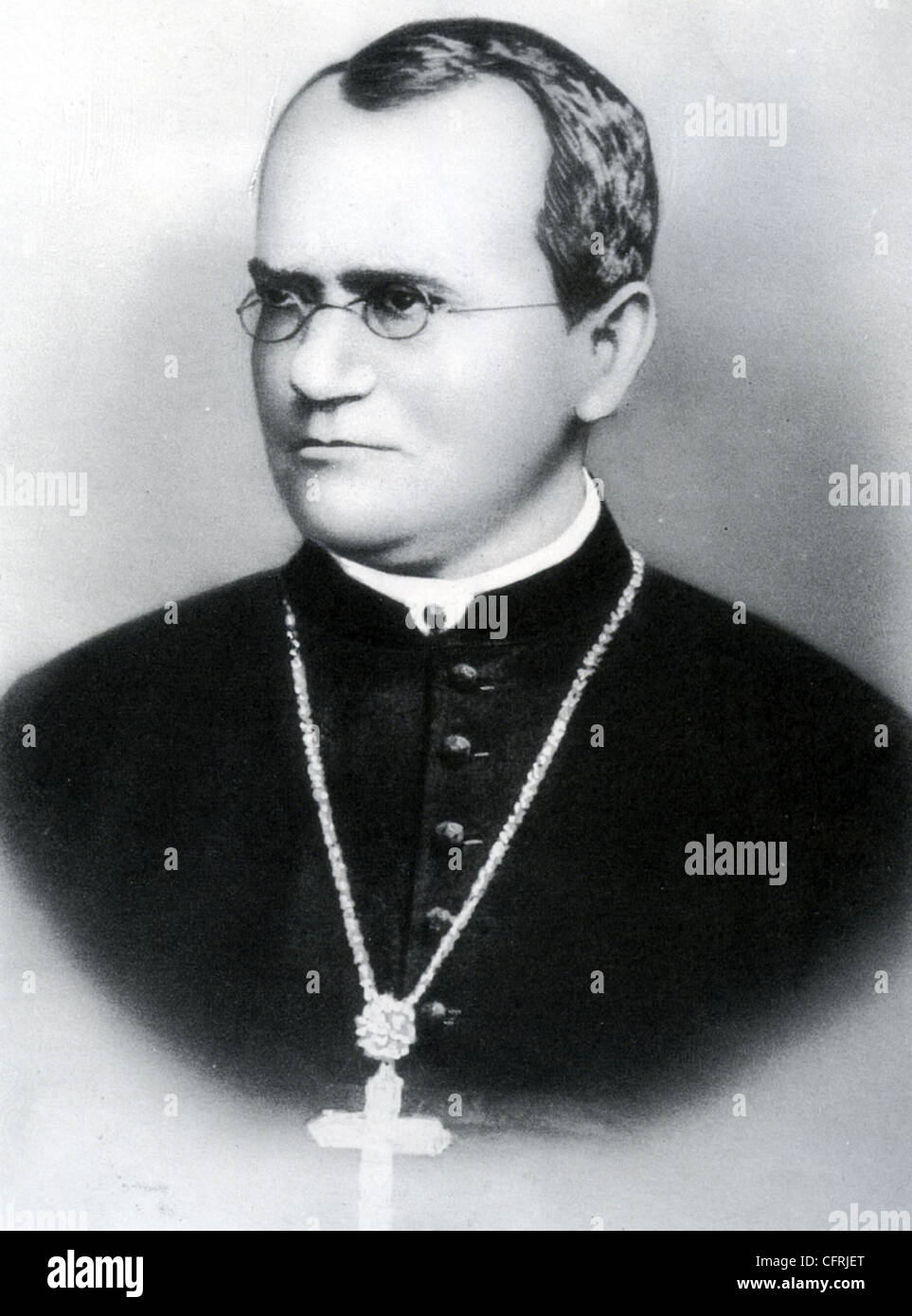 a biography of gregor mendel an austrian biologist Discover unexpected relationships between famous figures when you explore our famous scientists group  gregor mendel gregor mendel was an austrian monk who discovered the basic.