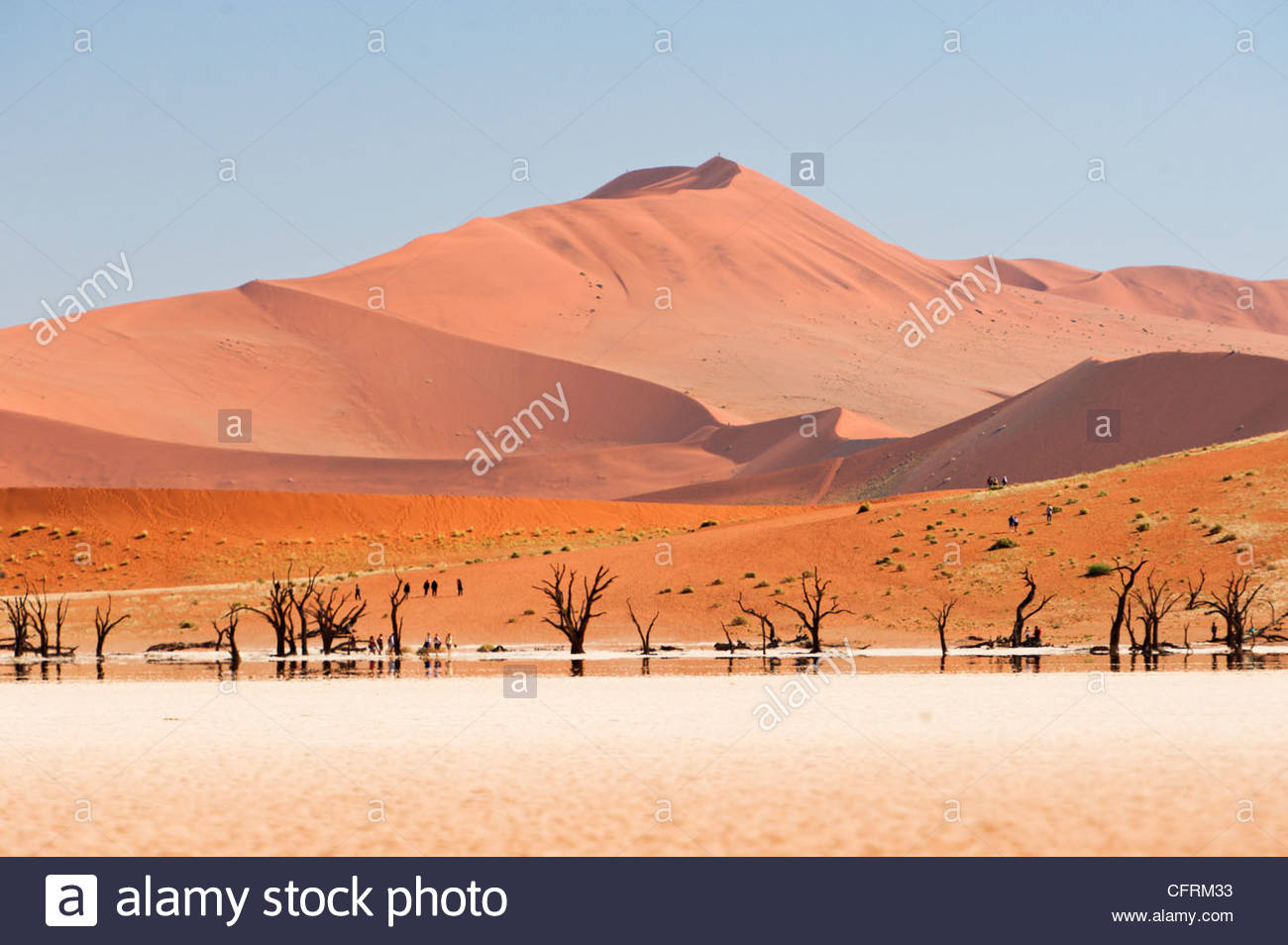 Dead Vlei, Namib-Naukluft Park, Namibia Stock Photo