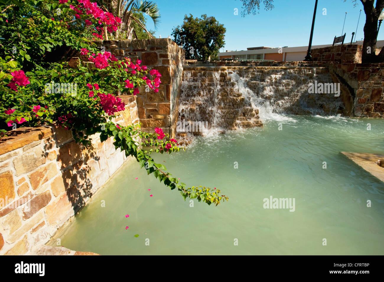 USA Texas San Antonio HemisFair Park Waterfall Fountain And Bougainvillea PLEASE CALL FOR SUPER HI RES FILES