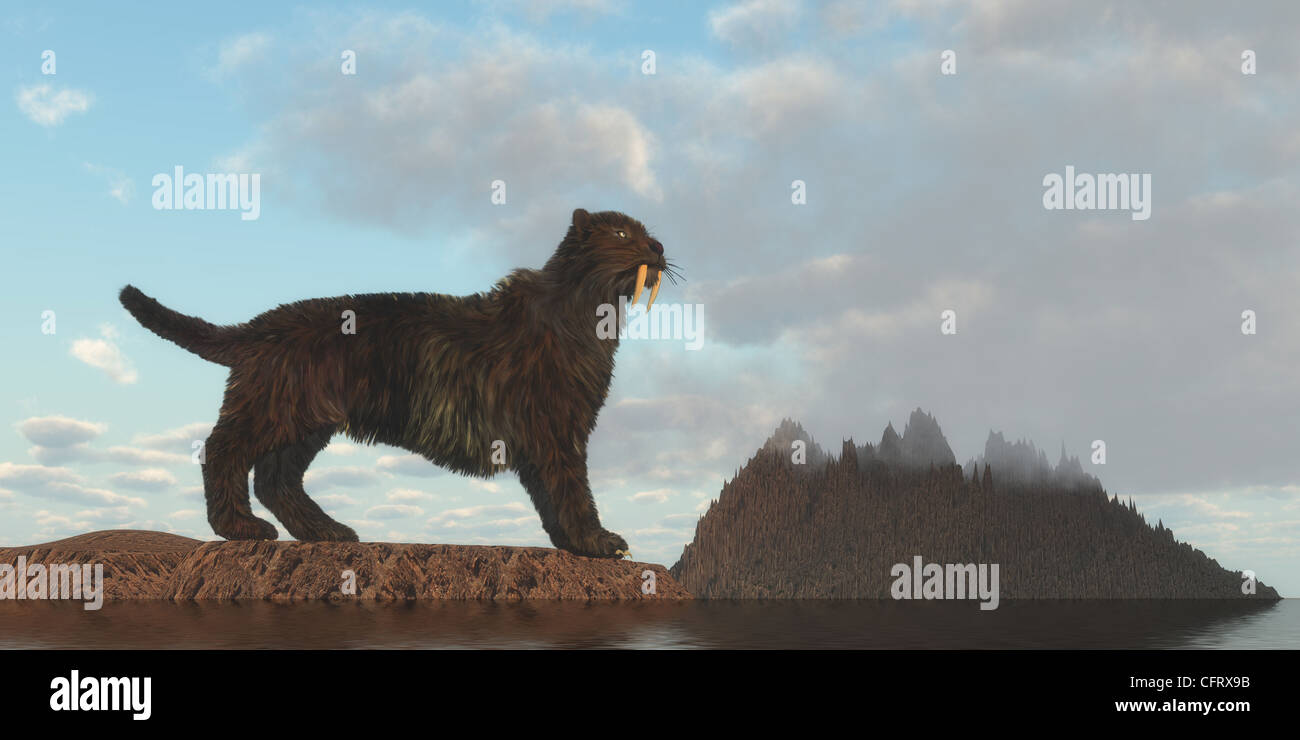 A feline that is now extinct which was a top worldwide predator in the Eocene and Pleistocene Epoch. - Stock Image