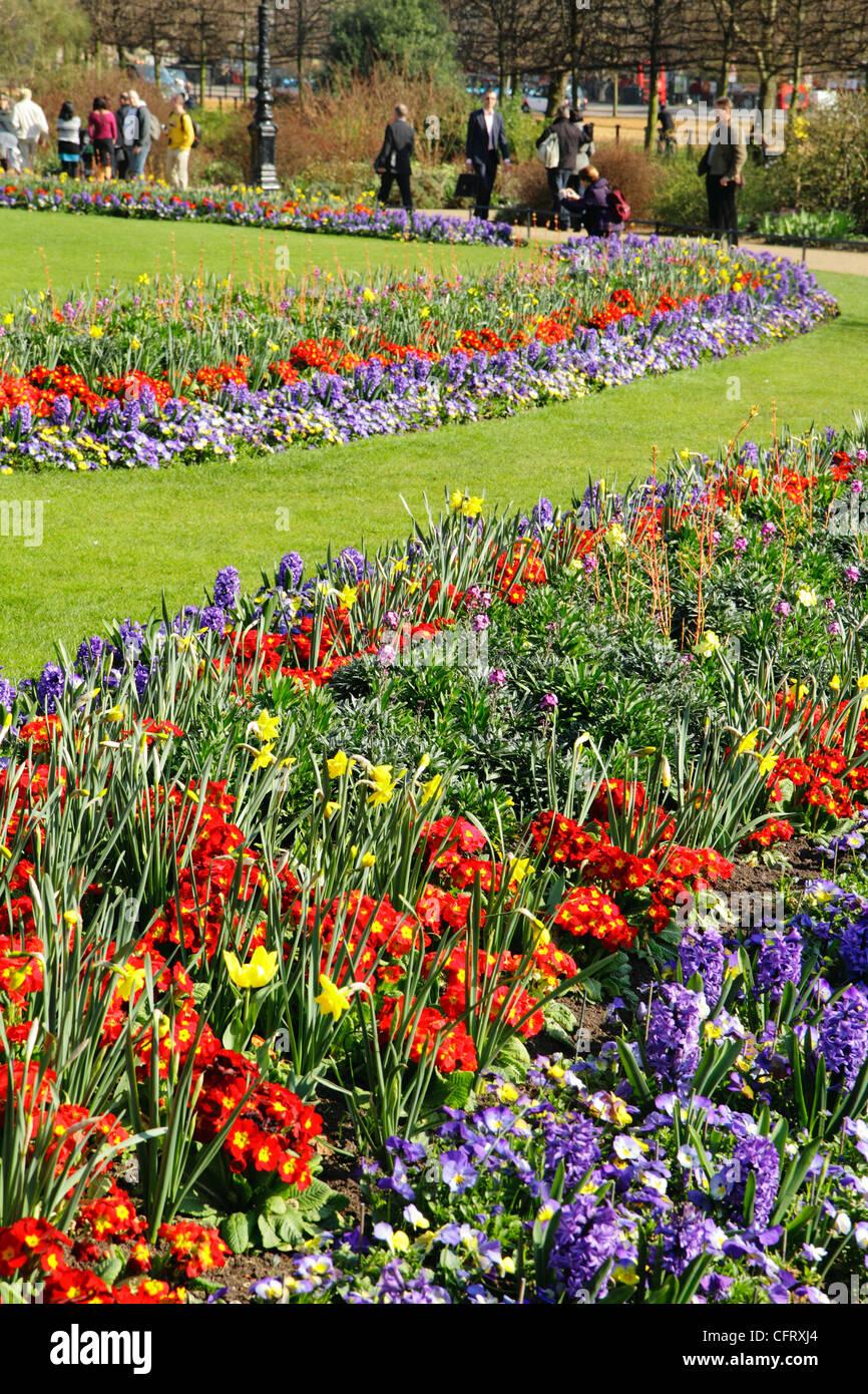 Spring flowers hyde park london uk stock photo 44166364 alamy spring flowers hyde park london uk mightylinksfo